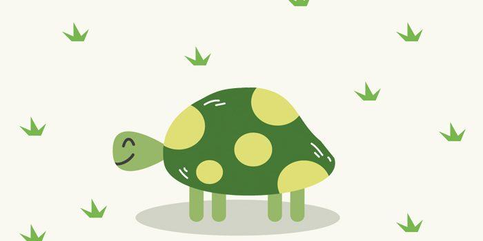 Psico Ayuda Infantil - La técnica de la Tortuga: qué es y cómo implementarla correctamente